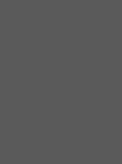 DecoLegno HM05 Piombo - detail