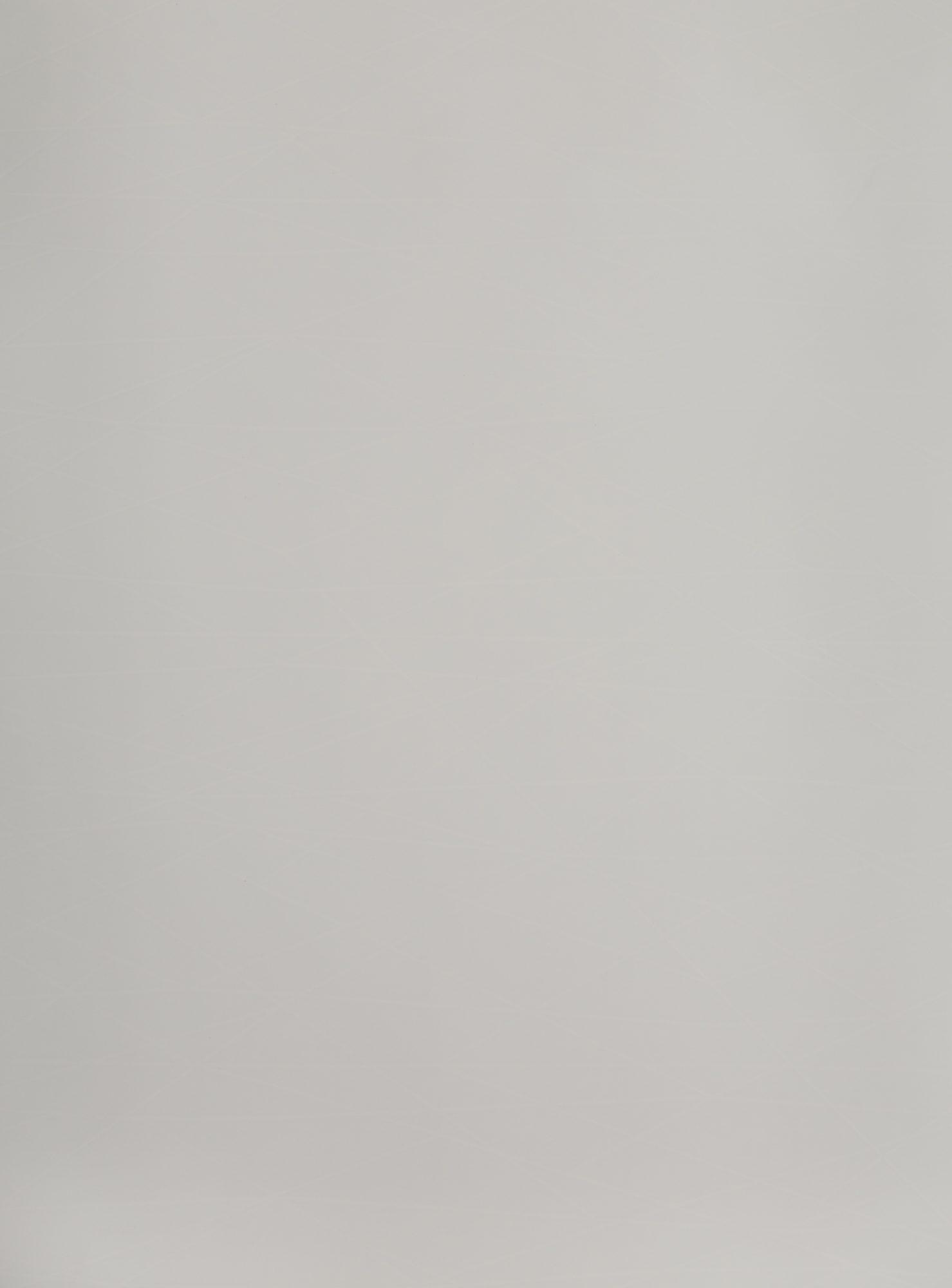 DecoLegno by Cleaf - B011 Shanghai Tekenprogramma 2800x2070mm