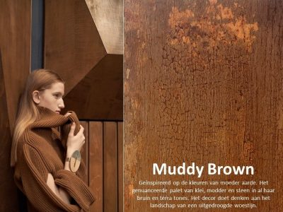 DecoLegno - HPL Specials - By Nature/Muddy Brown 2440x1220mm