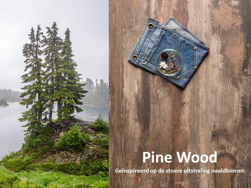 HPL Specials - Pine Wood Brown Moodboard