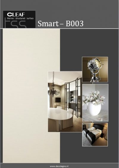 Cleaf/ DecoLegno B003 Smart detail
