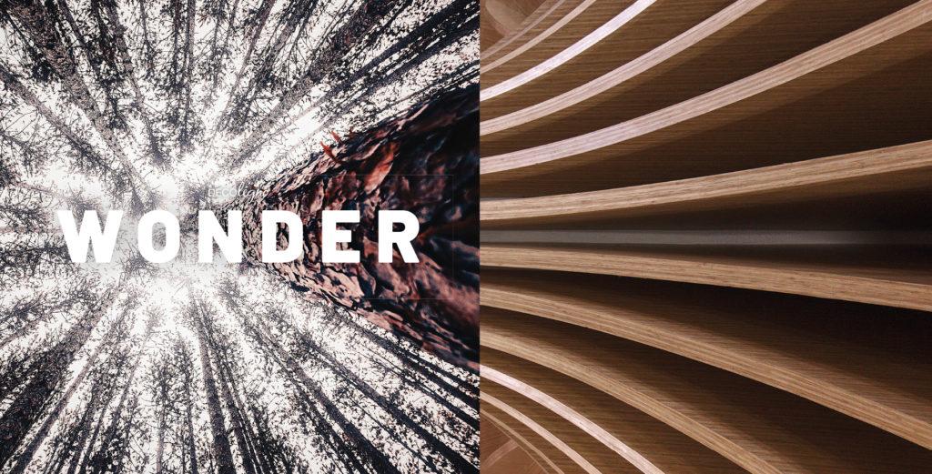 Wondere wereld van hout