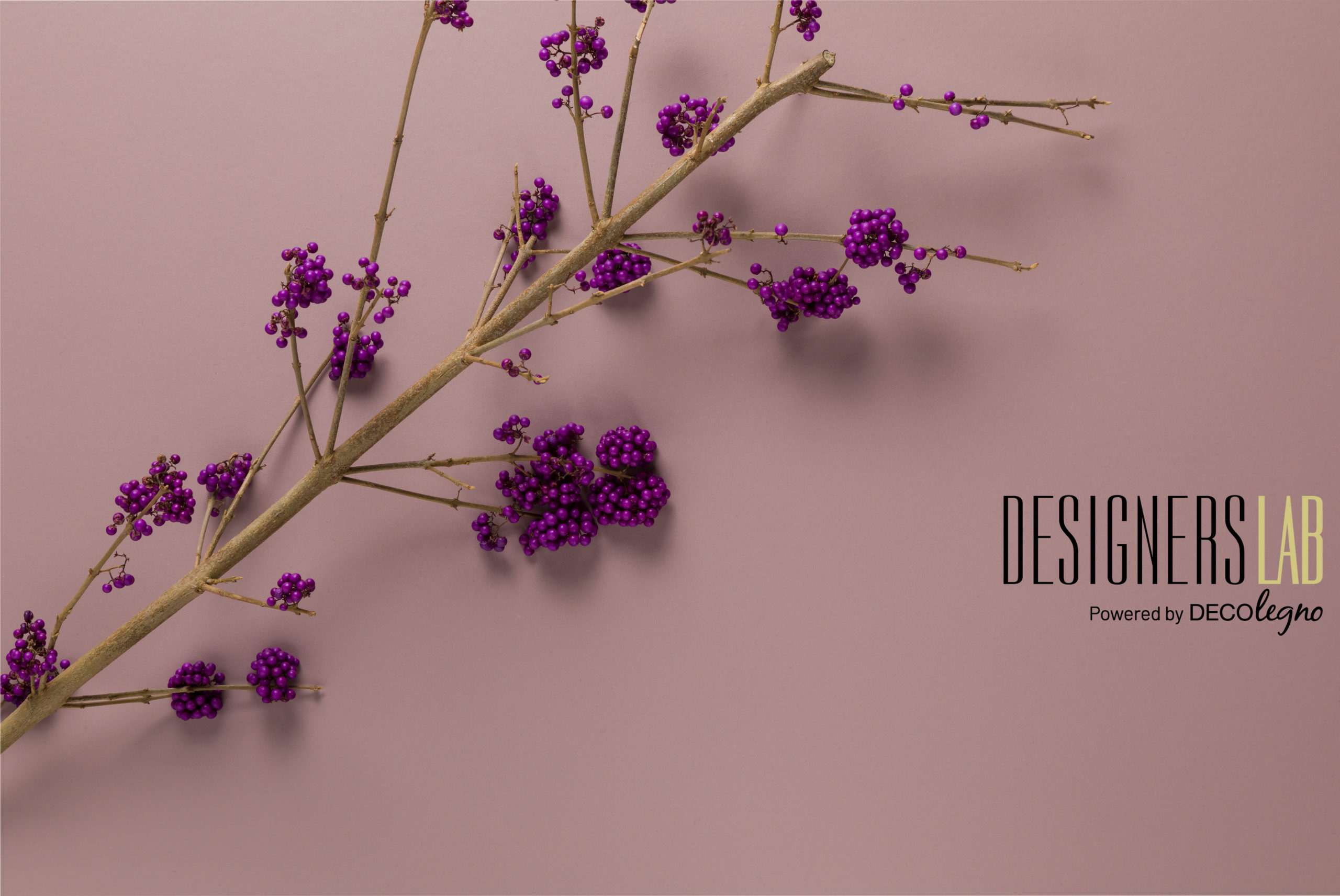 Designers Lab Ovatta collectie
