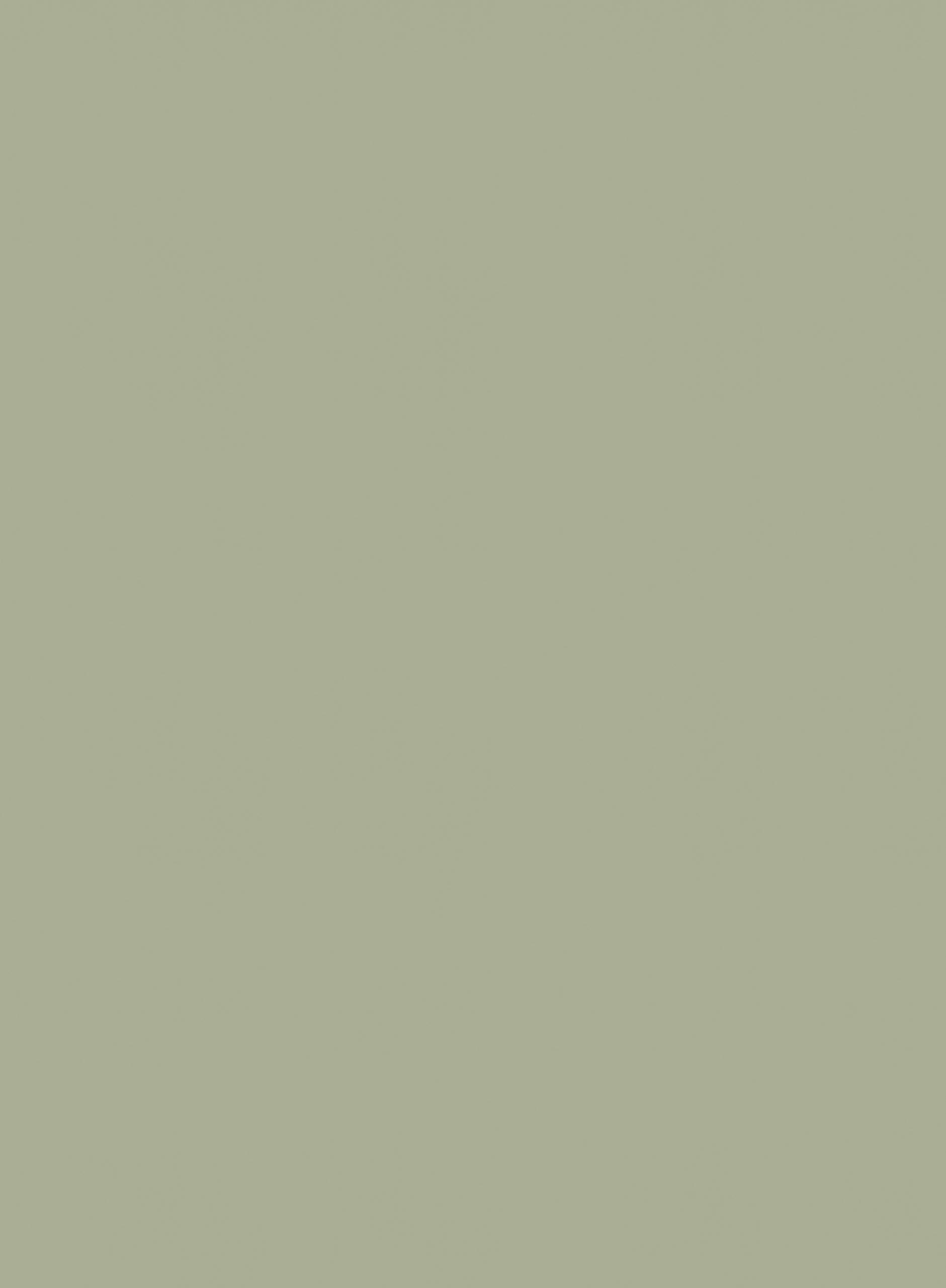 UB28 Ovatta hele plaatafbeelding 2800x2070 mm