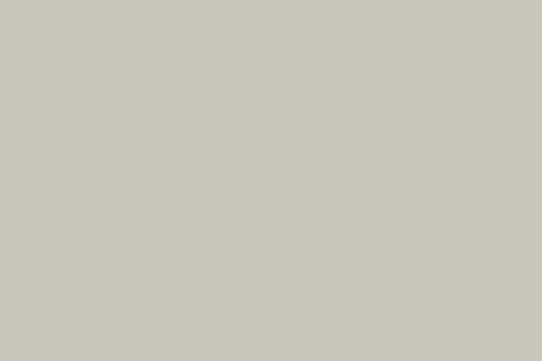 HPL Specials - 149 Zand Suede